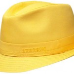 Sarı Şapka seo